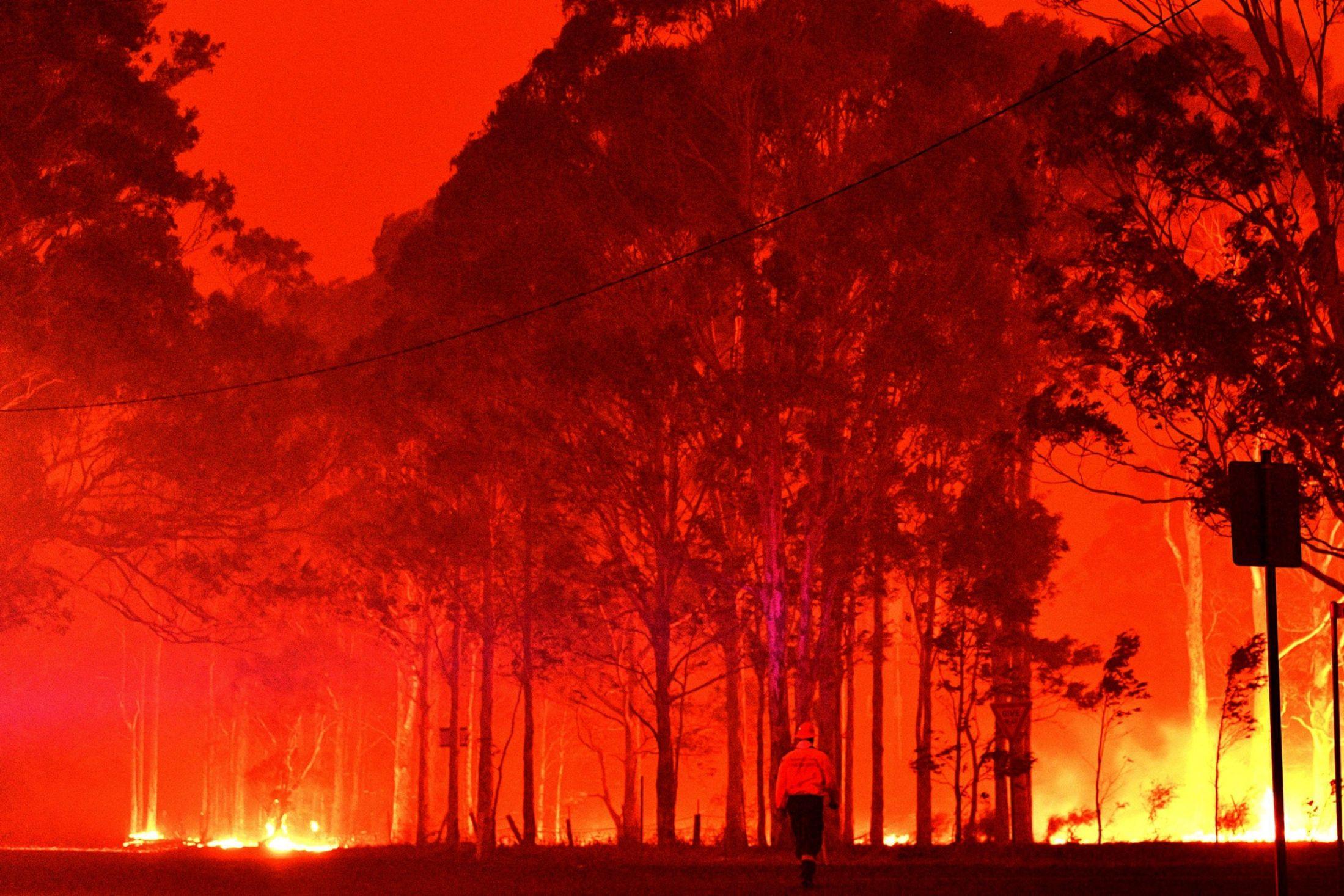 Australia Bushfires: Worse To Happen, Weather Forecast. 7