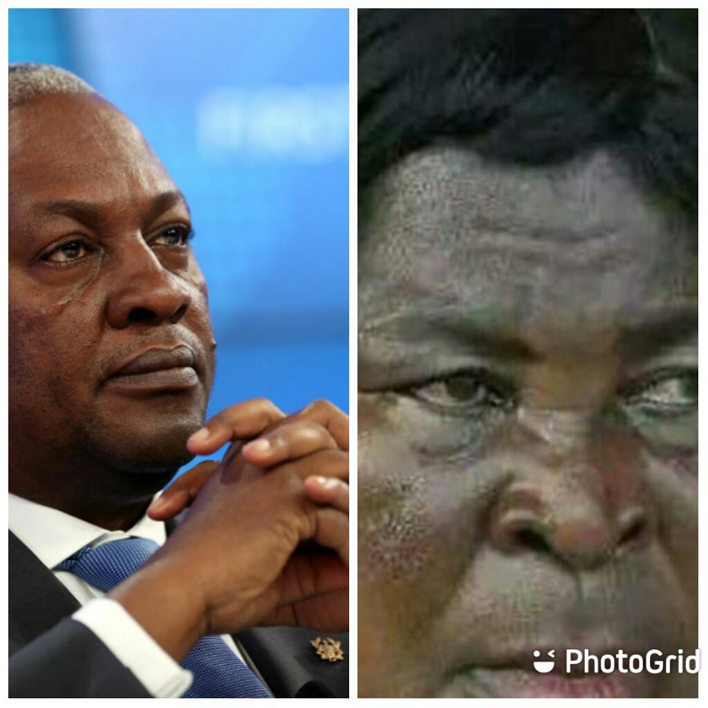 Election 2020: Akufo Addo Must Retire Mahama - Akua Donkor. 1