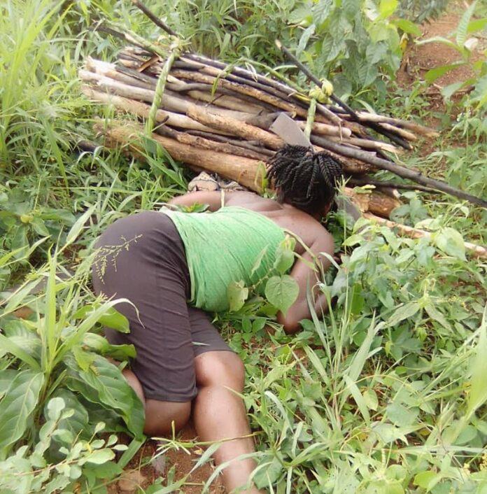 C/R: Woman, 55, found dead on her farm at Enyan Abaasa. 46
